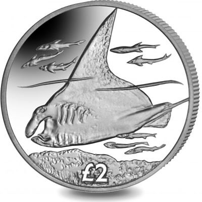 2018 British Indian Ocean Territory £2 Manta Ray Crown Coin in Capsule