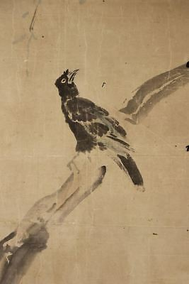 "JAPANESE HANGING SCROLL ART Painting ""Black bird"" Asian antique  #E2526"