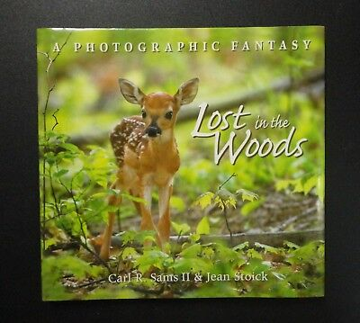 Beautiful Cute Photographs of Baby Deer & Other Forest Creatures Children's Book