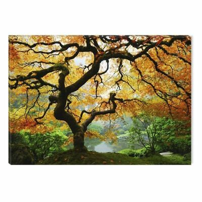 Startonight Canvas Wall Art Maple Tree Nature Large Landscape Stampato con...