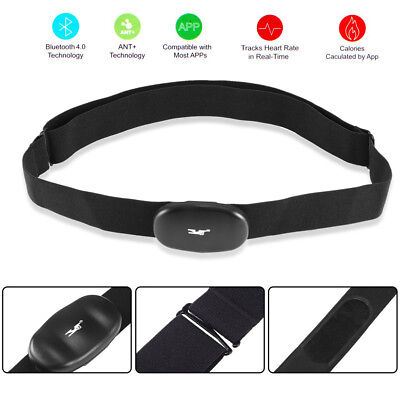 Black Low energy Chest Strap Wireless Bluetooth Heart Rate Belt Monitor Fr Sport