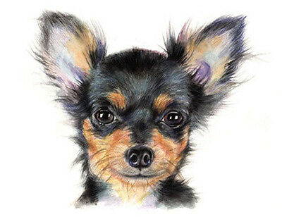 """artav Chihuahua 09 ACEO 2.5""""x3.5"""" Art Print From Watercolor Painting"""
