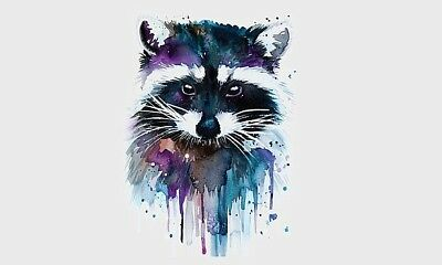 """COLORFUL RACCOON 9"""" x 6"""" wide iron on transfer (2000)"""