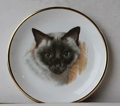 Cat-Kitten w-Blue Eyes Plate and Gold Trim Hand Painted Made in Greece-Awesome