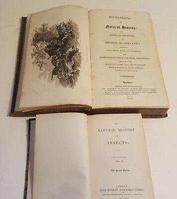 Natural History books 19th century