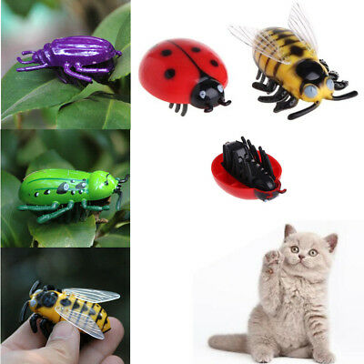 New Cat Toys Teaser Interactive Pet Beetle Cicada Auto Electric Walking Insect