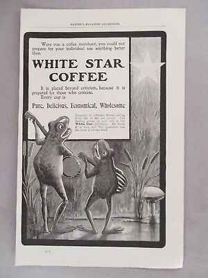 White Star Coffee PRINT AD - 1900 ~~ frogs play guitars illustration