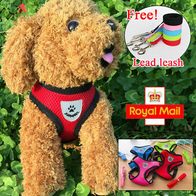 Soft Mesh Fabric Dog Puppy Pet Adjustable Harness | Lead Leash with Clip + Rope