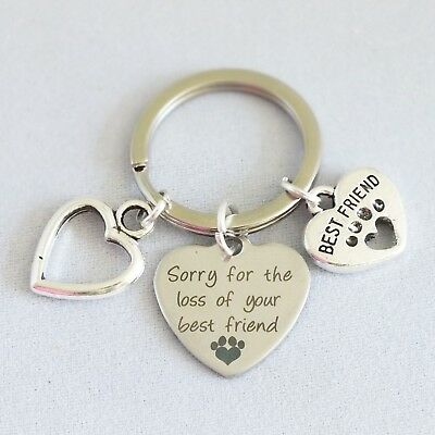 """""""Sorry for the loss of your best friend"""" memorial pet dog cat key ring alloy"""
