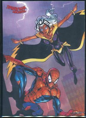 2009 Spider-Man Archives Trading Card #58 Storm