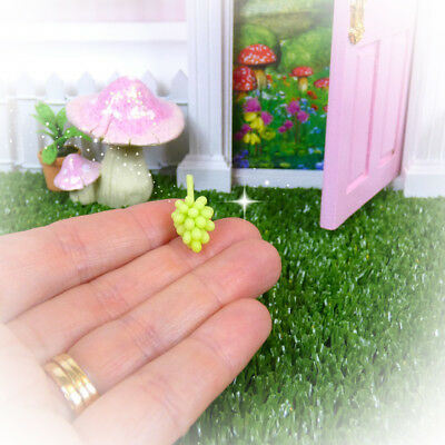FAIRY GRAPES Fairy Door Accessories Miniatures Australian Owned