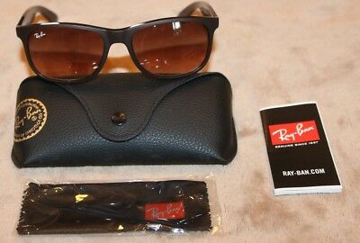 3fa1acb5d6 New Authentic RayBan Andy Sunglasses RB4202 6073 13 Matte Brown Brown  Gradient