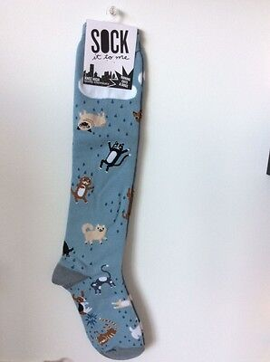 01d137b64192a Modcloth It's Raining, It's Adoring Socks -Women knee-high raining dogs ...
