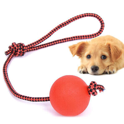 Indestructible Dog Ball on a Rope for Pet Puppy Toys Tug Balls Pet Chew Toys Z
