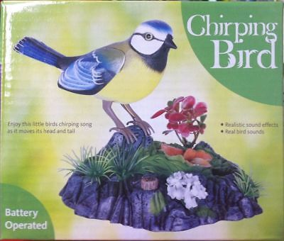 Chirping Bird - Birds Sitting Realistic Sounds Effects & Movements Brand New