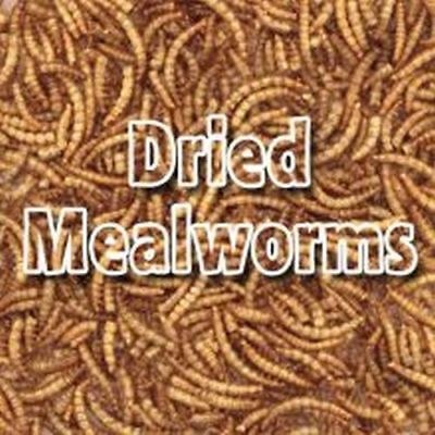 Supa Dried Mealworms 5kg 8191
