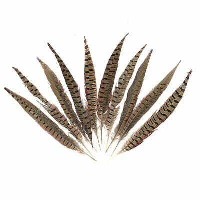 Beautiful Rooster Tail Feathers 12-14 Inch Color:Natural Color QTY:10 PCS G2R2