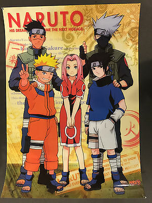 Naruto Pinup Poster and other types lot of Eight