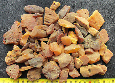 Natural Genuine Baltic Amber Stones 310g.