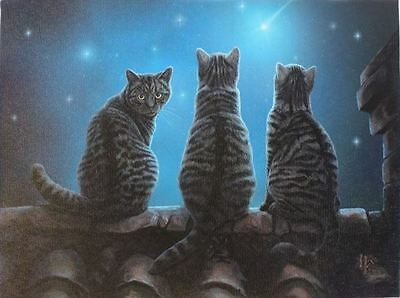 """Wish Upon a Star Plaque by Lisa Parker 10"""" x 7"""" Cat"""