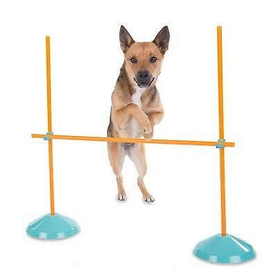 Dog Agility Training Equipment Starter Kit Tunnel Obedience Obstacle Course Play
