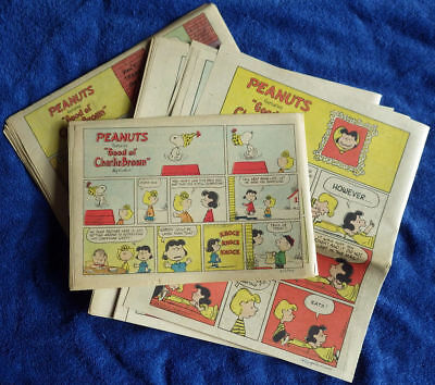 Peanuts 1975 52 Sunday comic strips - Complete - Charles Schulz