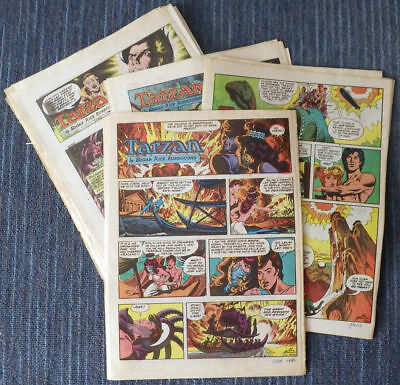 Tarzan 1978 51 Sunday comic strips - Russ Manning