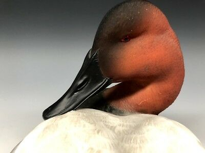 Ducks Unlimited Special Ed 2000-2001 Canvasback Hunting Decoy Decoys Jett Brunet