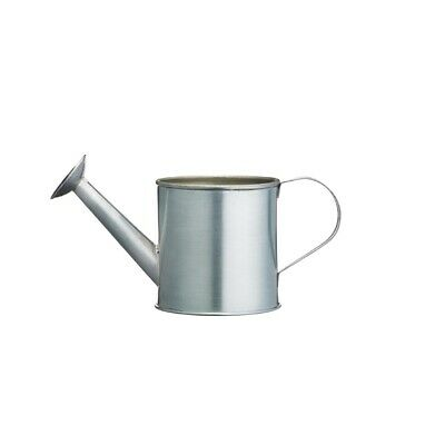 Mini Watering Can Chip Cup (Next working day UK Delivery)