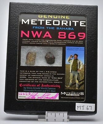 Genuine Meteorite From The Sahara Nwa 869 (Mt67)