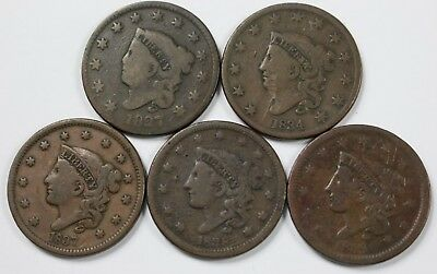 5x Large Cent Lot Matron Young Head Mixed Date Old US Coin Coins NR P3R Lot 3