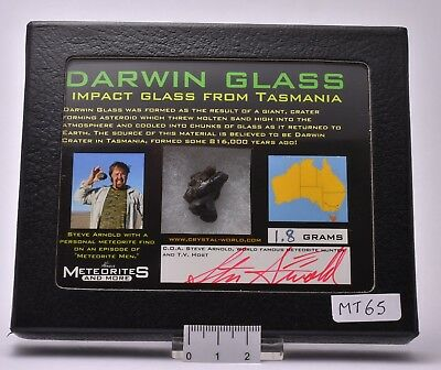 Impact Glass Darwin Glass From Tasmania (Mt65)