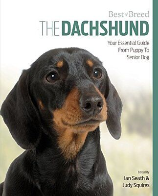 Dachshund Best of Breed Paperback Book