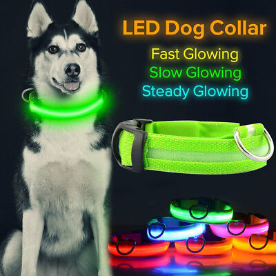 Dog Cat Pet LED Collar Flashing Luminous Adjustable Safety Light Neck Strap Tag