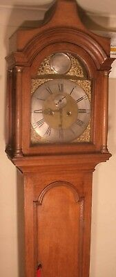 "Antique Oak  "" Alnwick ""  Brass  Dial 8 Day Grandfather / Longcase Clock"