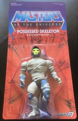 Possessed Skeletor Masters Of The Universe Super 7