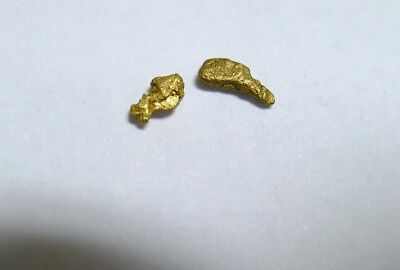 2 Natural, High Purity Alaskan Placer Gold Nuggets! Nice Size.  .35 grams!