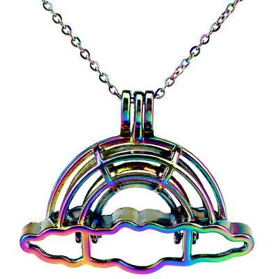 """C796 COLORFUL Rainbow Oyster Cage Locket Diffuser 20"""" Stainless Steel Chain"""
