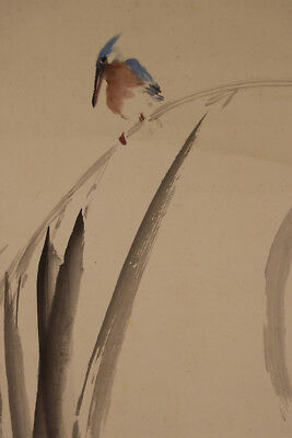 """JAPANESE HANGING SCROLL ART Painting """"Kingfisher"""" Asian antique  #E2781"""