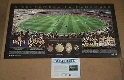 Dustin Martin Richmond Tigers 2017 Afl Premiers Hand Signed Panoramic Print Coa