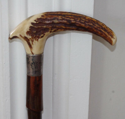 Antique Victorian Sterling and Horn Handled Bamboo Walking Cane.