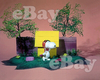 Rare! CHARLIE BROWN Cartoon Color Photo CHARLES SCHULZ View Master Art SNOOPY