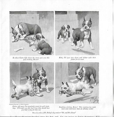 Vintage *  Artist Robert Dickey Boston Terrier Dog Cartoons *
