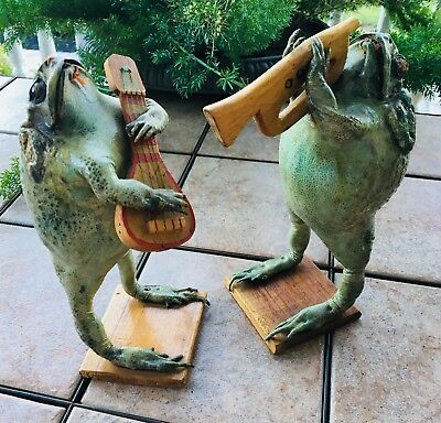 Real Taxidermy Frogs Playing Horn Guitar Bullfrog Statue Figure Band Rare Unique