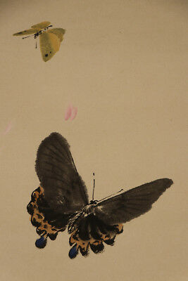 """JAPANESE HANGING SCROLL ART Painting """"Butterfly"""" Asian antique  #E2933"""