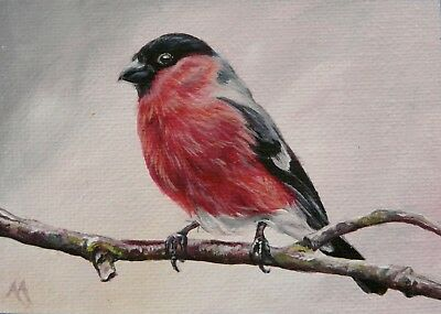 Original ACEO By Alison Armstrong - Miniature Wildlife Bird Painting - Bullfinch