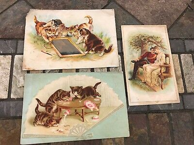 Vintage Victorian Trade Cards Kittens Woolson Spice Coffee Union Clothing (26)