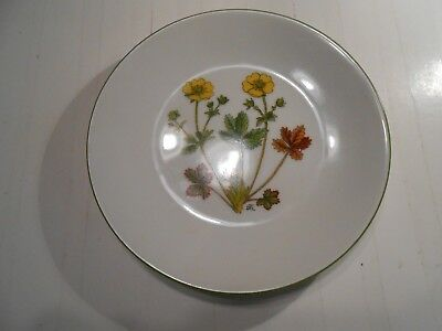 Mountain Flower Series of Dagny Tande Lid. Alpine Cinquefoil Collectable Plate!!