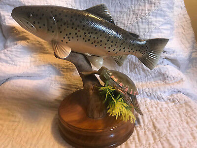 Original hand carved wood Brook Trout & Painted Turtle Mount by Rick Miotke