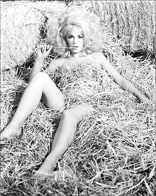 Stella Stevens   8 X 10 Glossy Photo # 6